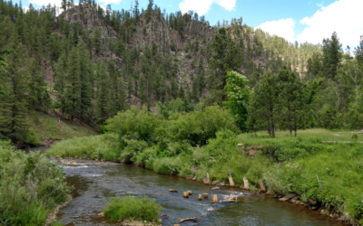 Why Mineral Exploration Poses no Risk to Rapid Creek