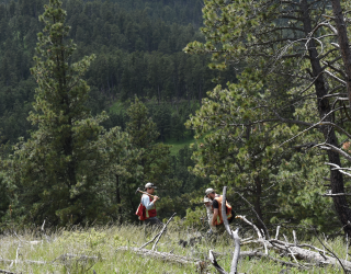 Public Comment Period Ends – What's Next for F3's Black Hills Project?